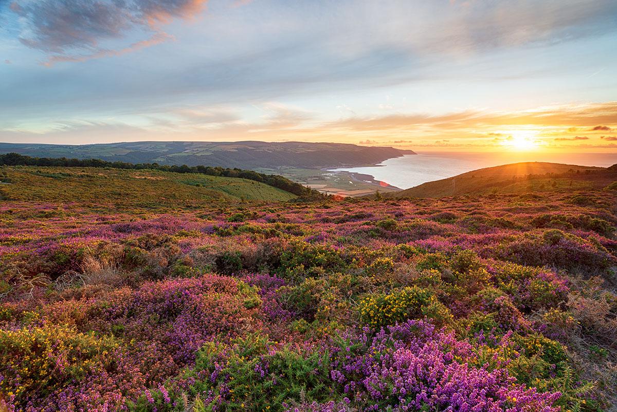 Beautiful spot in Exmoor