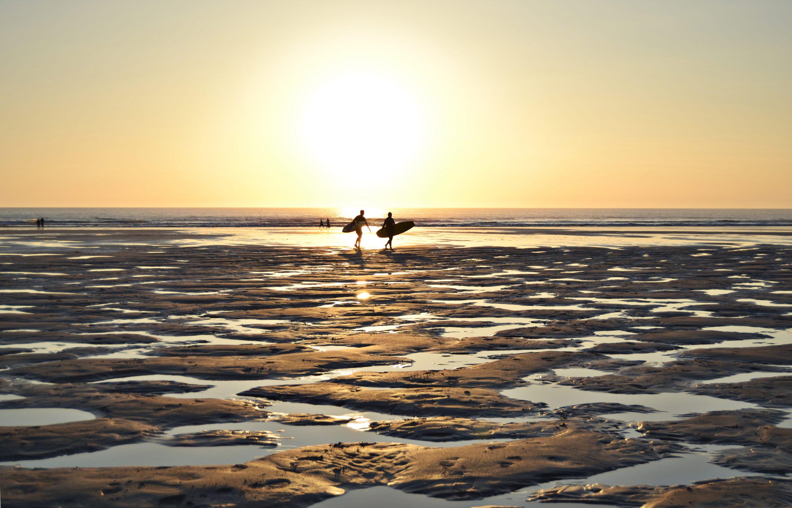 Surfers on a beach at sunrise