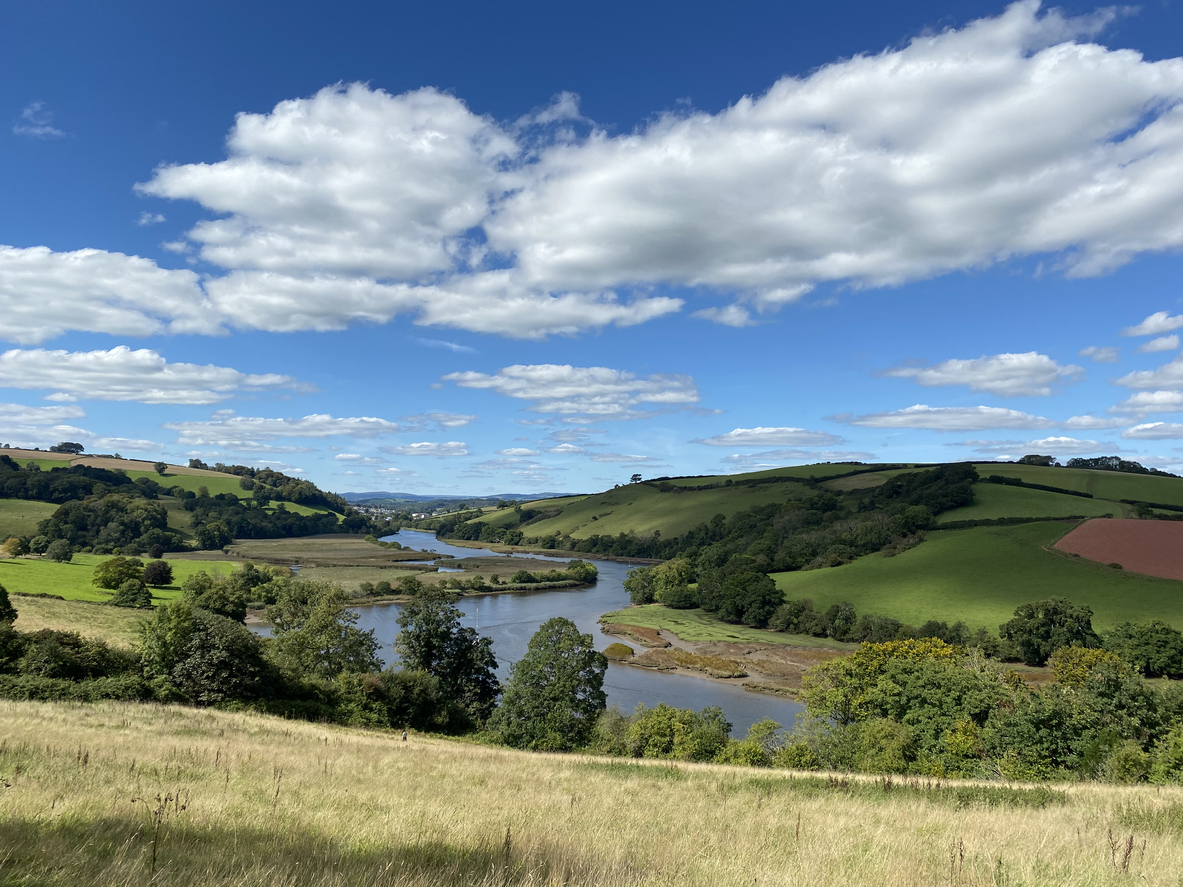 A wide river runs through country fields in the summer sun. Taken of the River Dart from near Totnes, Devon.