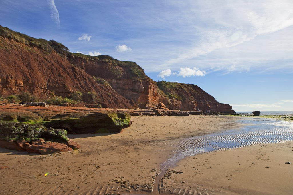 Jurassic Rocks at Orcombe Point, Exmouth, Devon