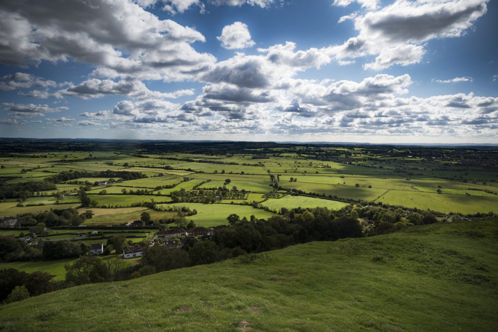 Countryside landscape near Glastonbury, Somerset, South West England