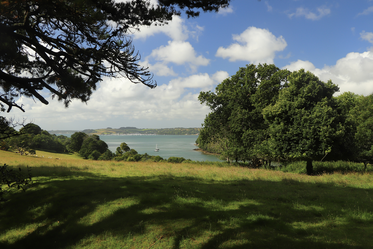 Trelissick Gardens in Cornwall, South West England