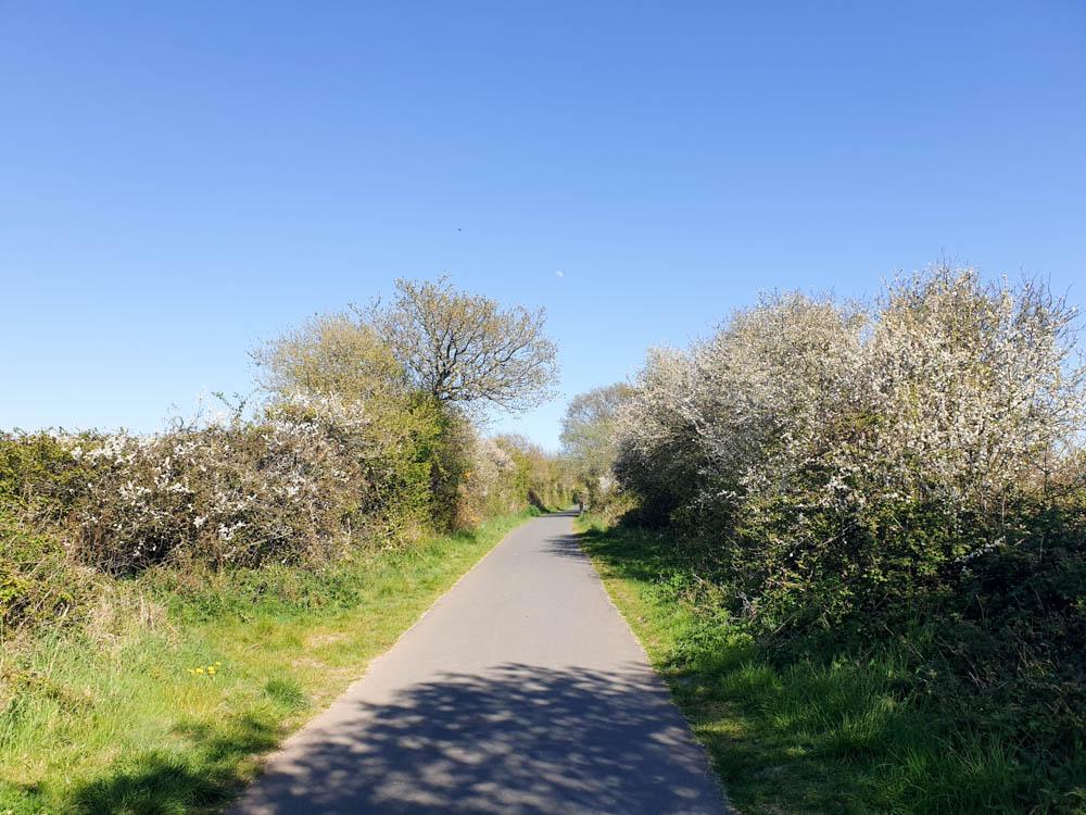 Budleigh Salterton Railway Path
