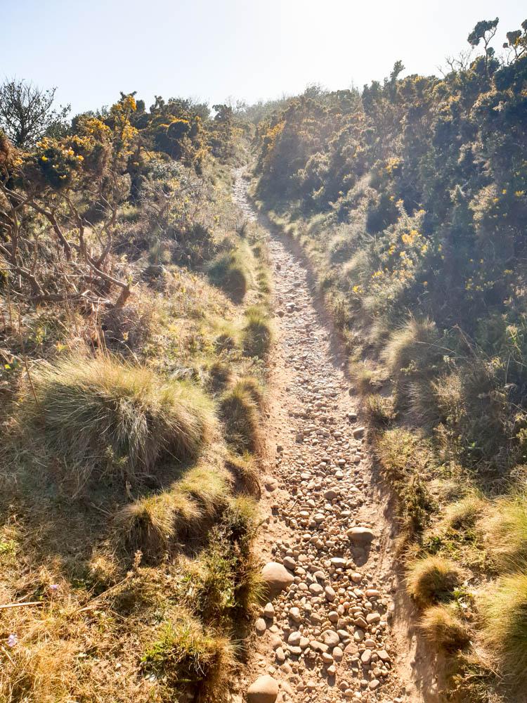 The South West Coast Path Trail