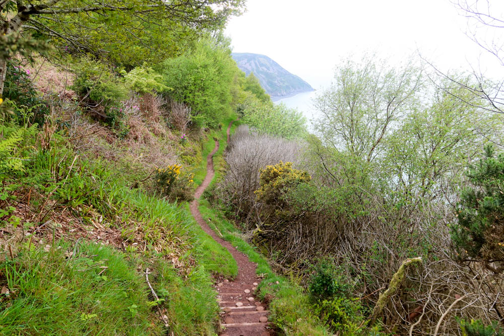 Coast path going downwards with sea in background