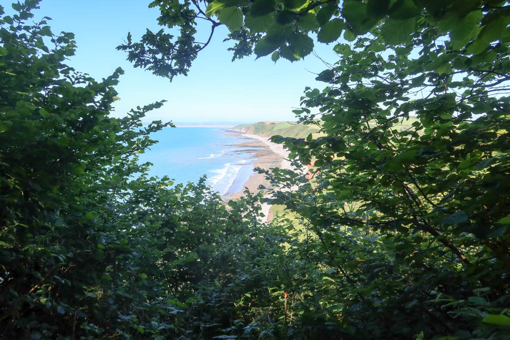 Scenic view of Babbacombe cliff