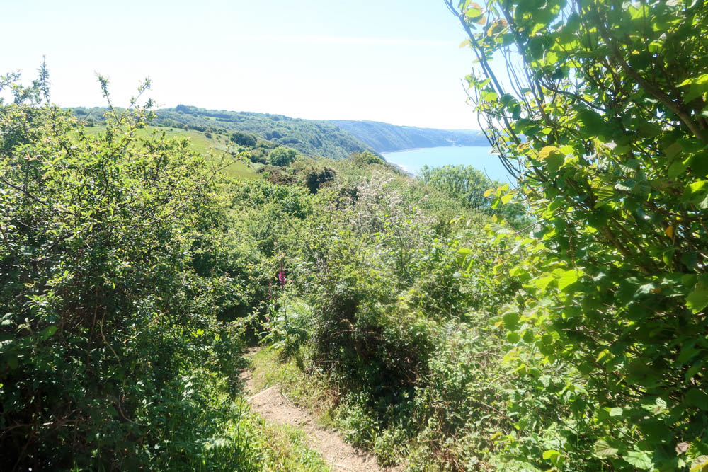 South west coast path walking along
