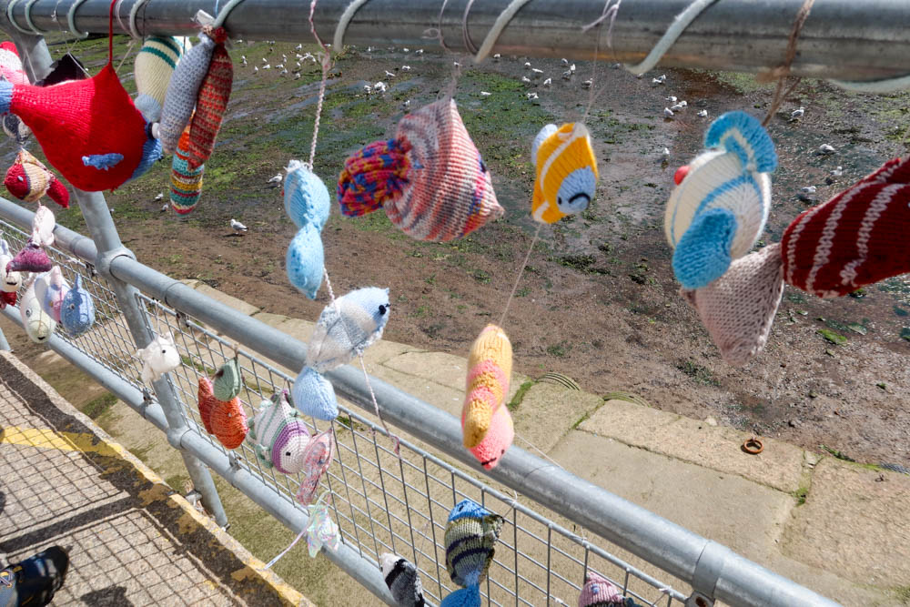 Knitted fish Mevagissey