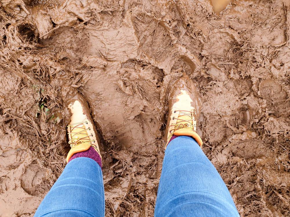 muddy shoes while pumpkin picking!