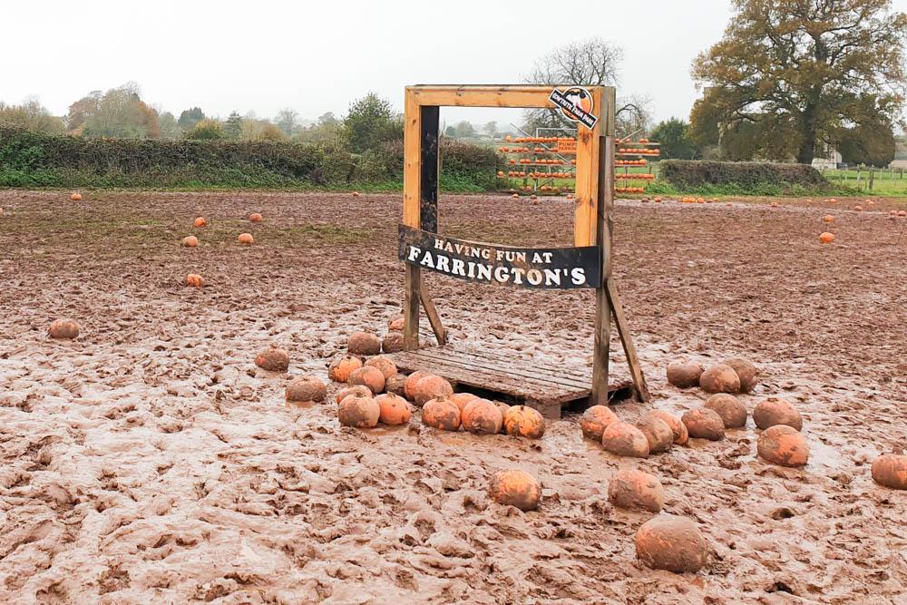farringtons photo frame