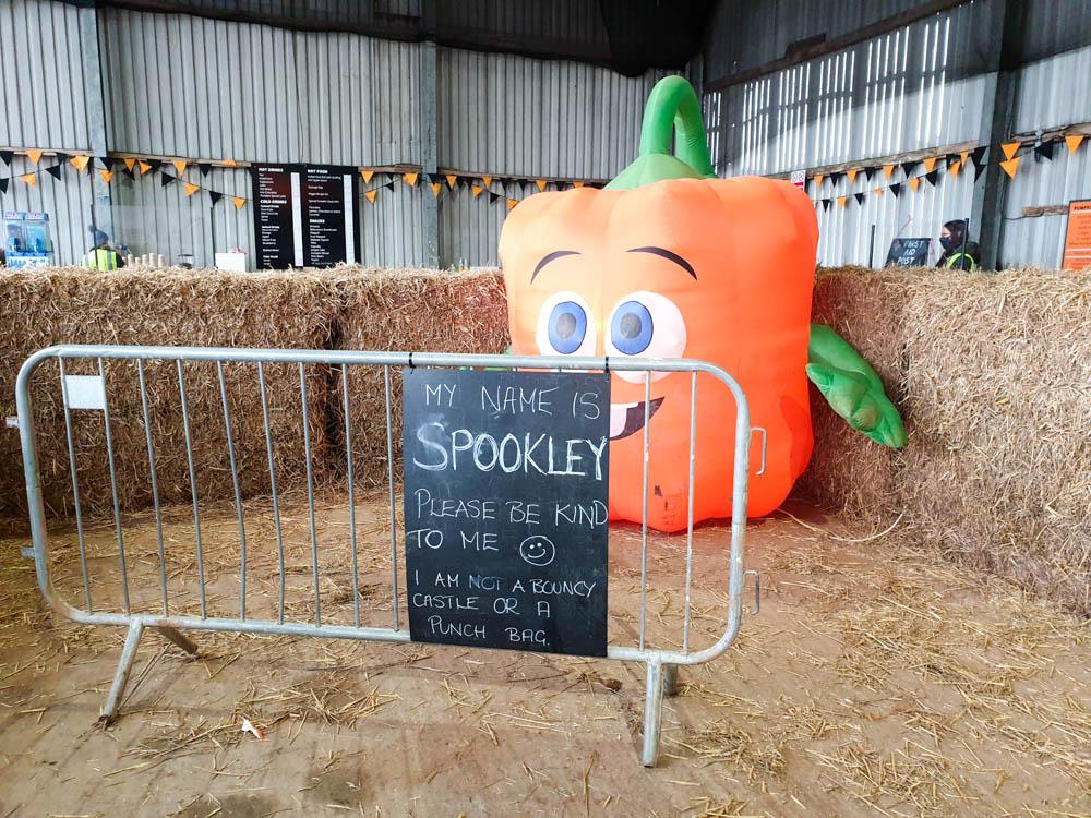Spookley the pumpkin